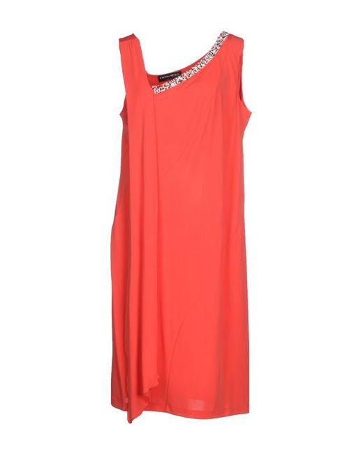 Domina | Женское Платье До Колена