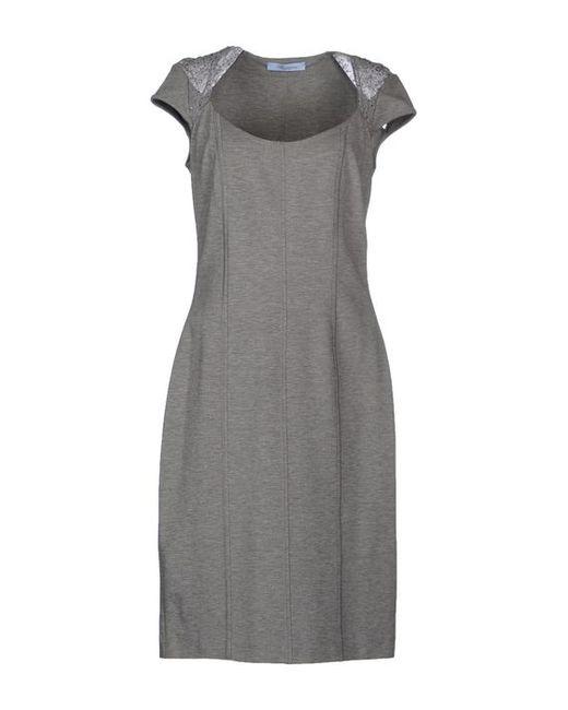 Blumarine | Женское Платье До Колена