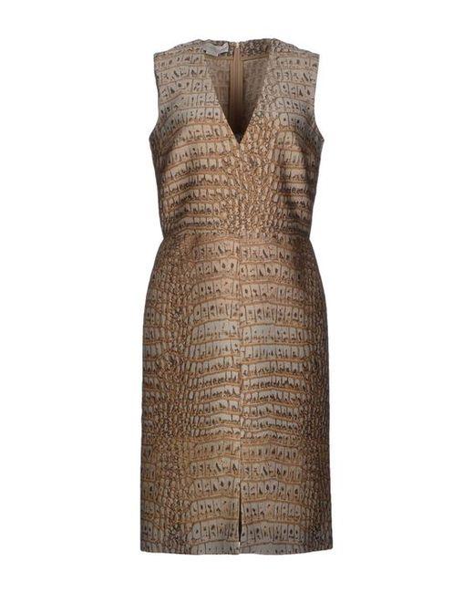 Stella Mccartney | Женское Платье До Колена
