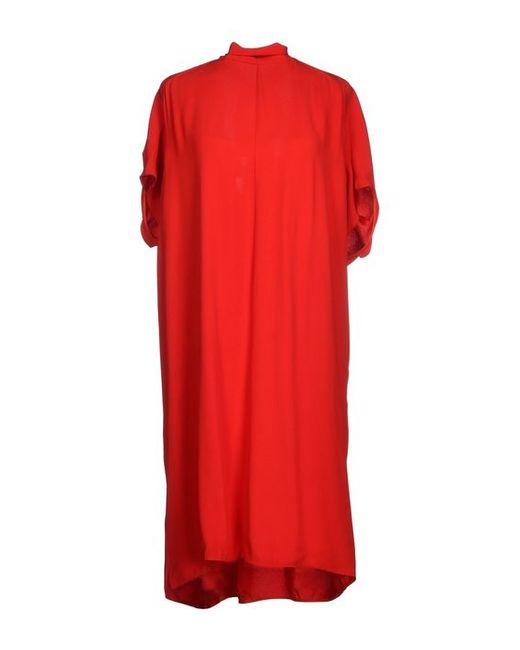 Marni | Женское Платье До Колена