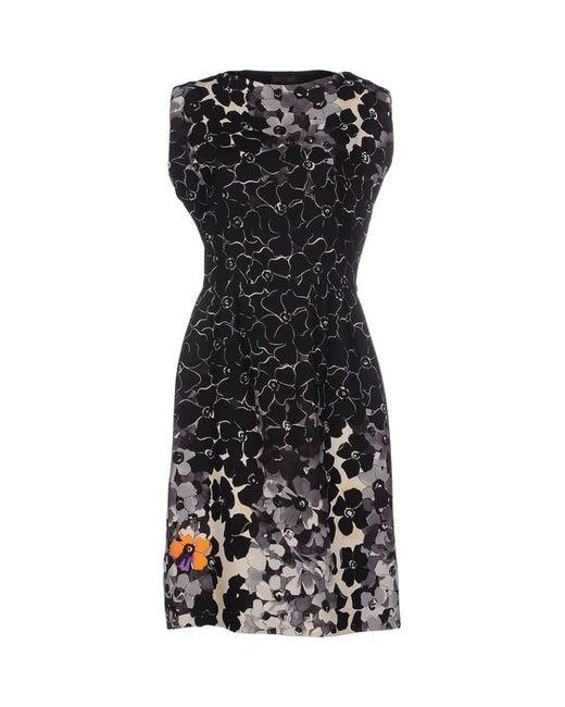 Vionnet | Женское Платье До Колена