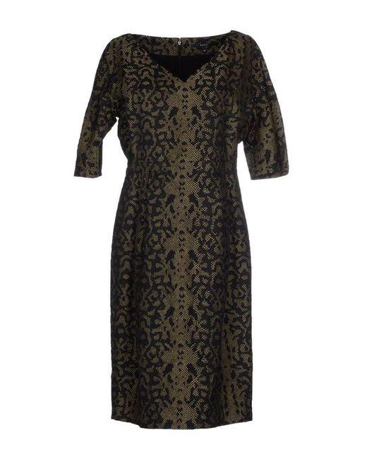 Gucci | Женское Платье До Колена