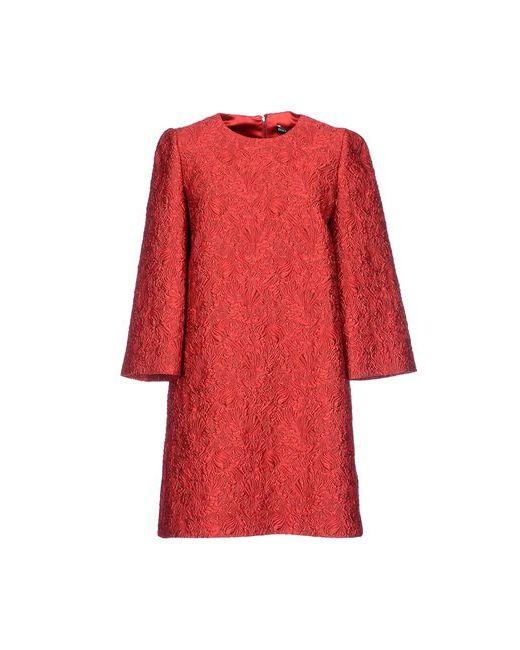 Dolce & Gabbana | Женское Красное Короткое Платье
