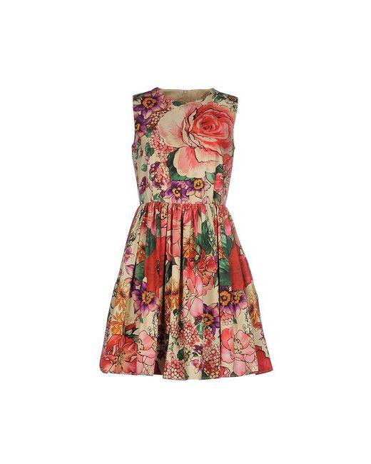 Red Valentino | Женское Бежевое Короткое Платье