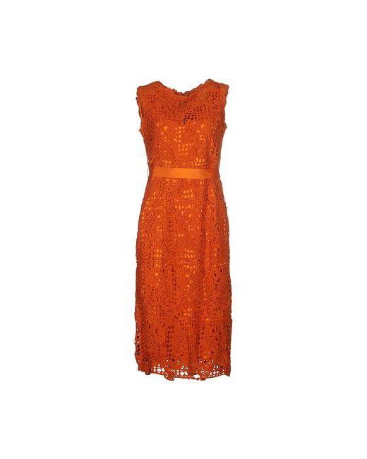 Scervino Street   Женское Оранжевое Платье До Колена