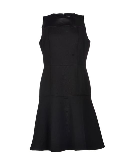 Proenza Schouler   Женское Платье До Колена
