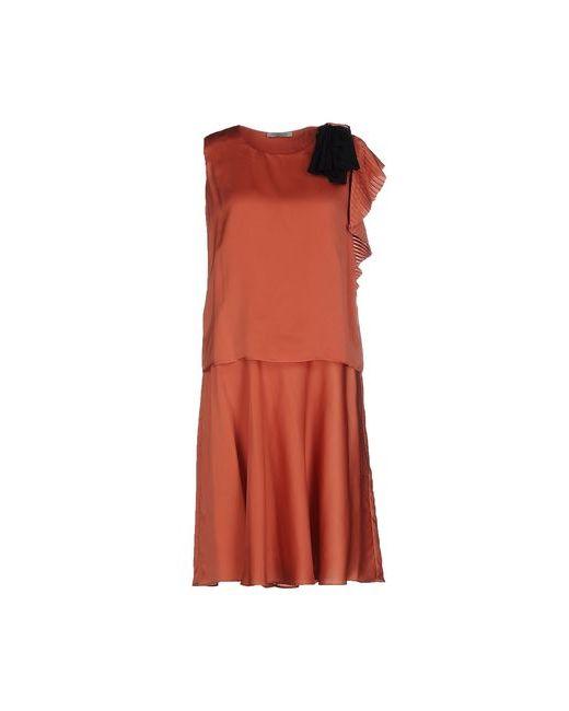 Pinko Grey | Женское Коричневое Короткое Платье