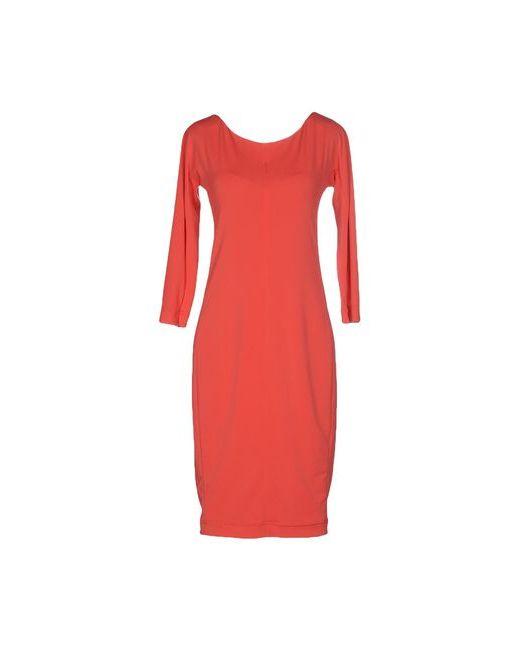 Liviana Conti | Женское Розовое Платье До Колена