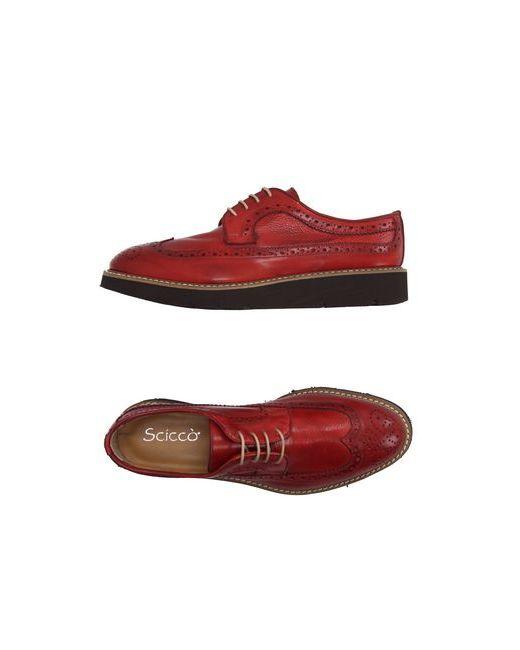 SCICCO   Мужская Красная Обувь На Шнурках