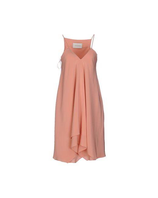 Cedric Charlier   Женское Розовое Короткое Платье